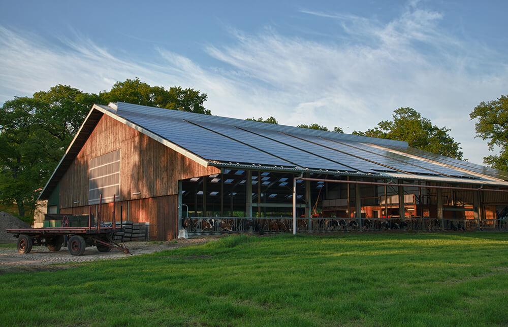 Landwirtschaftliche Gebäude - Dickhutbau